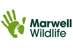 Marwell Wildlife Voucher Code