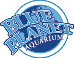 Blue Planet Aquarium Voucher Code